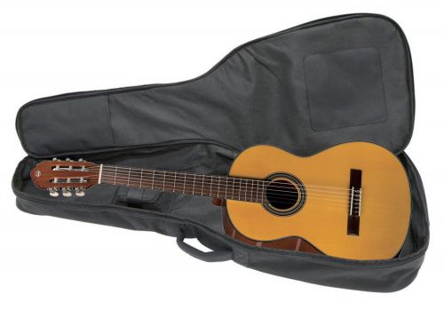 guitar in case copy.JPG