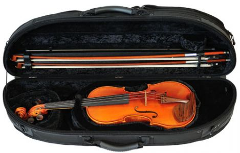 GC1-240B_violin_web version.jpg